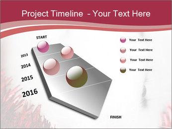 0000062116 PowerPoint Template - Slide 26