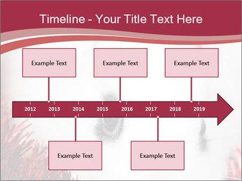 0000062116 PowerPoint Template - Slide 28