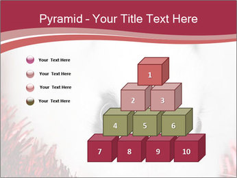 0000062116 PowerPoint Template - Slide 31