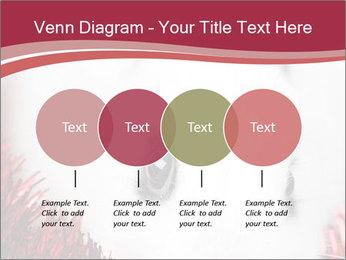 0000062116 PowerPoint Templates - Slide 32