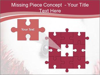 0000062116 PowerPoint Template - Slide 45