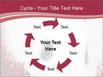 0000062116 PowerPoint Template - Slide 62