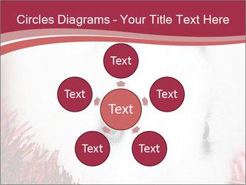 0000062116 PowerPoint Template - Slide 78