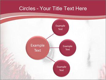 0000062116 PowerPoint Template - Slide 79