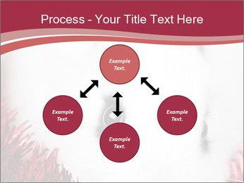 0000062116 PowerPoint Template - Slide 91