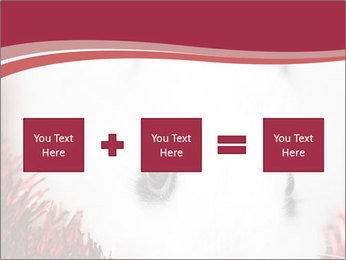 0000062116 PowerPoint Template - Slide 95