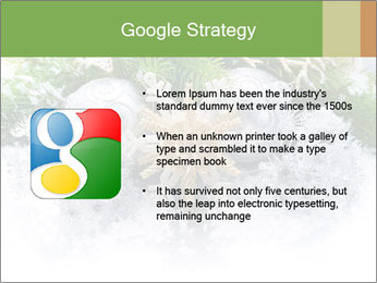 0000062117 PowerPoint Templates - Slide 10