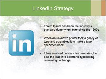 0000062117 PowerPoint Templates - Slide 12
