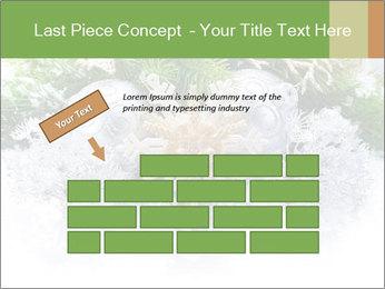 0000062117 PowerPoint Templates - Slide 46