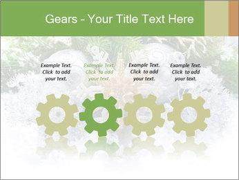 0000062117 PowerPoint Templates - Slide 48
