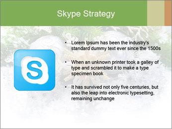 0000062117 PowerPoint Templates - Slide 8