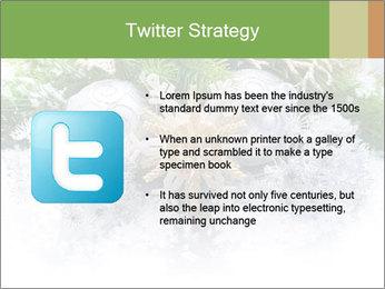 0000062117 PowerPoint Templates - Slide 9