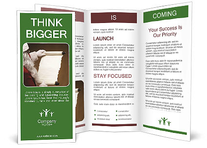 0000062139 Brochure Templates