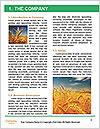 0000062142 Word Template - Page 3