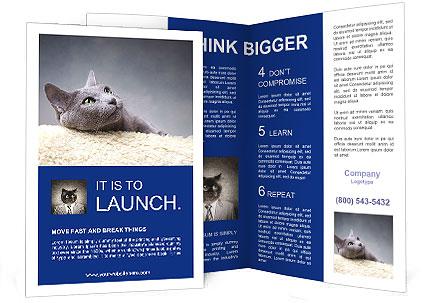 0000062143 Brochure Templates
