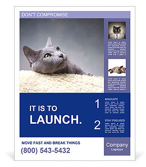 0000062143 Poster Templates
