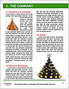 0000062148 Word Template - Page 3
