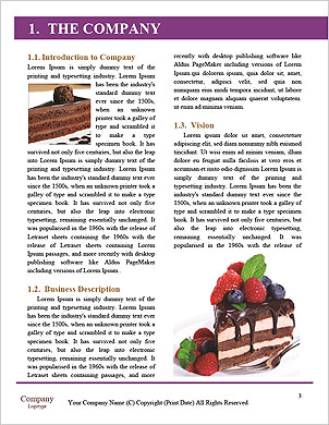 0000062167 Word Template - Page 3