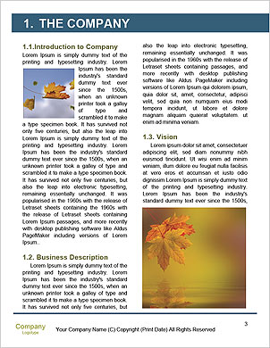 0000062179 Word Template - Page 3