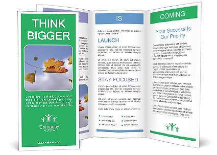 0000062181 Brochure Template