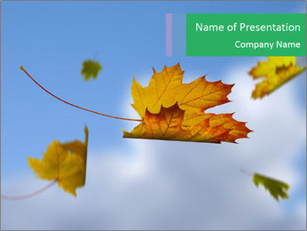 0000062181 PowerPoint Templates - Slide 1