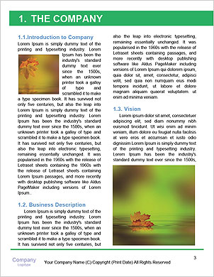 0000062181 Word Template - Page 3