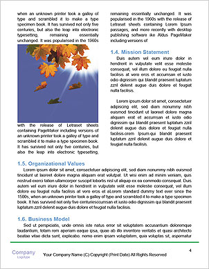 0000062181 Word Template - Page 4