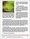 0000062182 Word Templates - Page 4