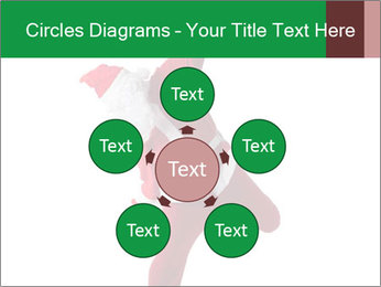 0000062183 PowerPoint Template - Slide 78