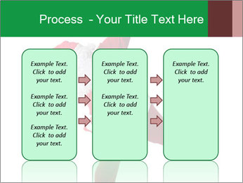 0000062183 PowerPoint Template - Slide 86
