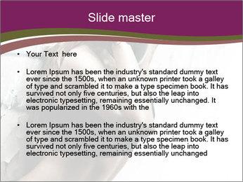 0000062185 PowerPoint Template - Slide 2