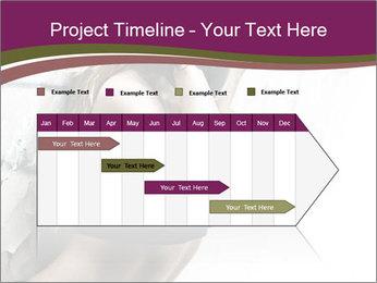 0000062185 PowerPoint Template - Slide 25