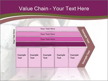 0000062185 PowerPoint Template - Slide 27