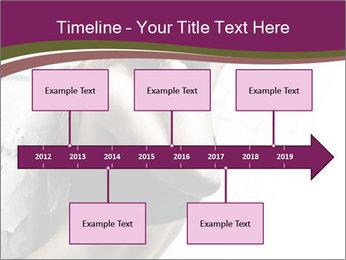 0000062185 PowerPoint Template - Slide 28