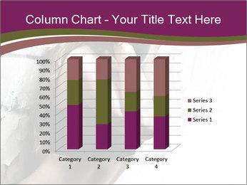 0000062185 PowerPoint Template - Slide 50