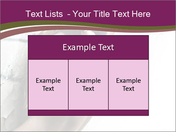 0000062185 PowerPoint Template - Slide 59