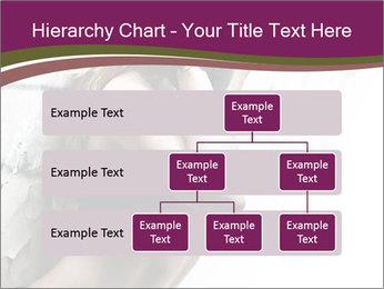 0000062185 PowerPoint Template - Slide 67