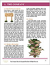 0000062189 Word Template - Page 3