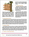 0000062189 Word Template - Page 4