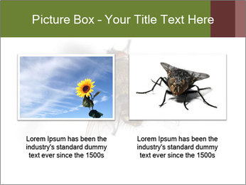 0000062193 PowerPoint Templates - Slide 18