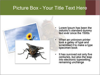 0000062193 PowerPoint Templates - Slide 20