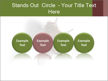 0000062193 PowerPoint Templates - Slide 76