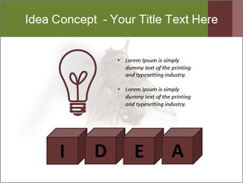 0000062193 PowerPoint Templates - Slide 80