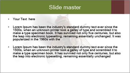 0000062193 PowerPoint Template - Slide 2