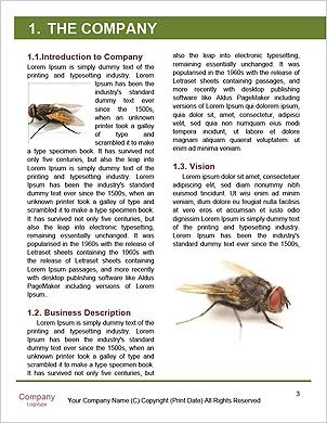 0000062193 Word Template - Page 3