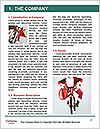 0000062202 Word Template - Page 3