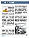 0000062209 Word Template - Page 3