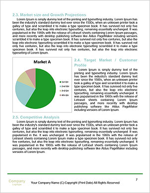 0000062223 Word Template - Page 7