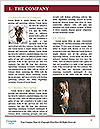 0000062229 Word Template - Page 3