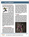 0000062241 Word Templates - Page 3